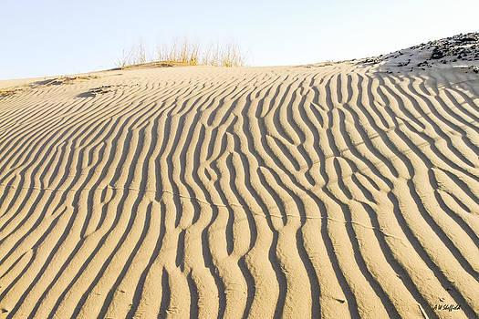 Allen Sheffield - Morning Shadows Across Sand Dune