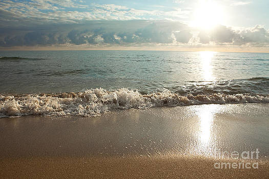 Morning Sunrise In Ft. Lauderdale by Sharon Dominick