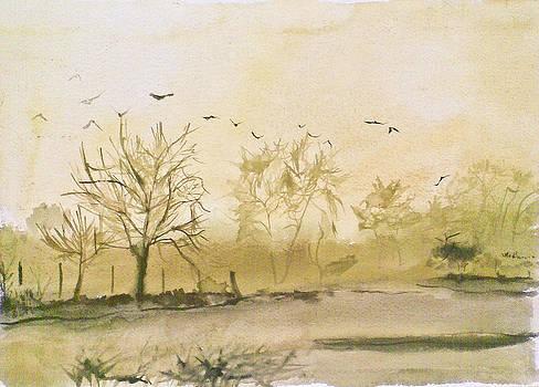 Morning by Vaidos Mihai