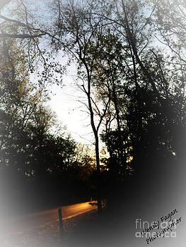 Morning Walk by Jeffery Fagan