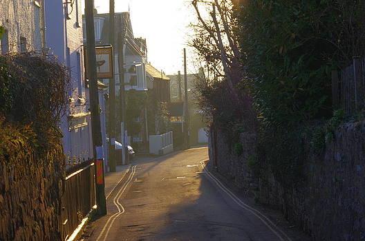 Morning Walk by Tom Salt