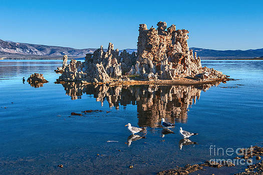 Jamie Pham - Morning Walk - View of the strange Tufa Towers of Mono Lake in California.