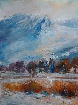 Morning winter by Natalia Bardi