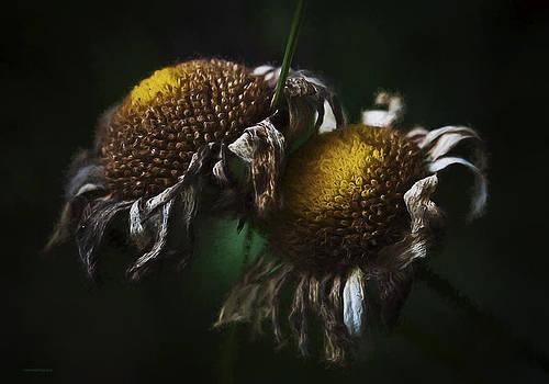 Morte De Fleurs by Ron Jones