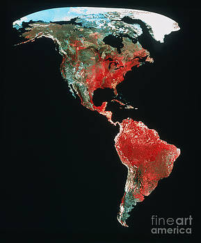 Earth Satellite Corporation - Mosaic Of Avhrr