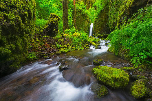 Mossy Grotto  by Joseph Rossbach