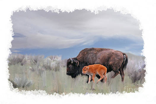 Dan Friend - Mother Buffalo with baby buffalo