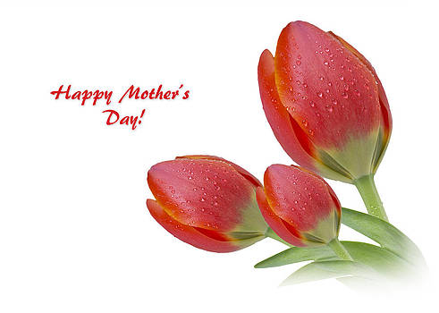 Mother's Day by Mariola Szeliga