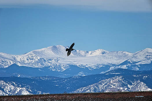 Mount Evans View by Stephen  Johnson