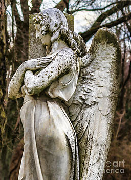 Mount Olivet Cemetery Angel Of The Wings by Photo Captures by Jeffery