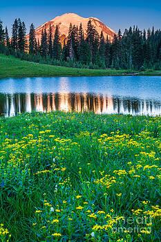 Inge Johnsson - Mount Rainier and Tipsoo Lake
