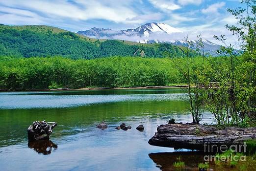 Mount Saint Helen by William Wyckoff