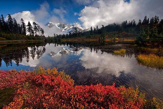 Mount Shuksan Autumn Splendor by David  Forster