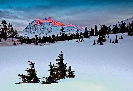 Mount Shuksan Winter Glow by David  Forster