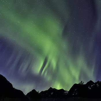 Mountain Aurora by Lisa Hufnagel