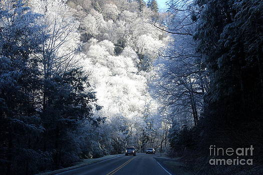 Mountain Drive by Jeanne Forsythe