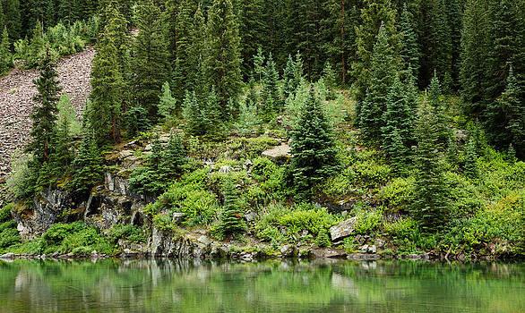 Adam Pender - Mountain Green