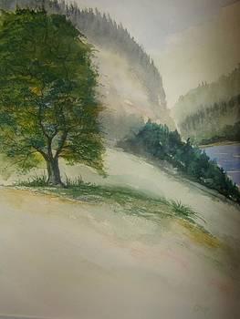 Mountain Landscape by Chip Picott