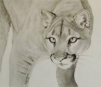 Mountain Lion by Karen E Marvel
