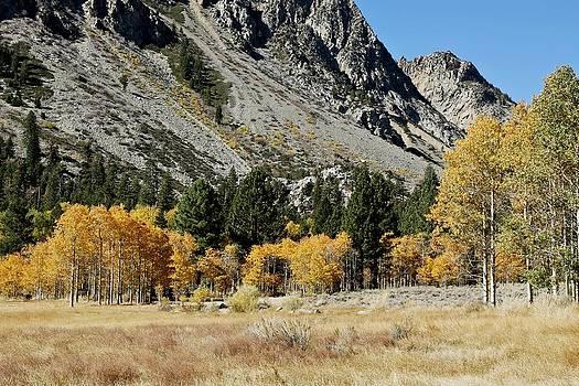 Mountain Pass by David Winge
