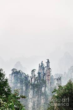Mountain peaks in fog Zhangjiajie National Forest Park by Oleksiy Maksymenko