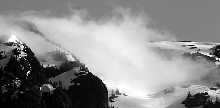 Mountain Range Black and White Three by Diane Rada