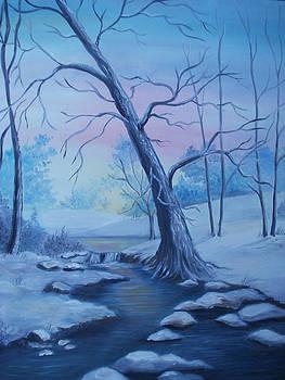 Mountain Stream  by Glenda Barrett