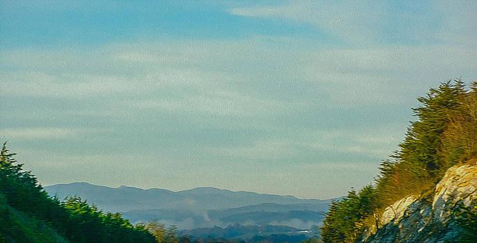 Judy Hall-Folde - Mountain View