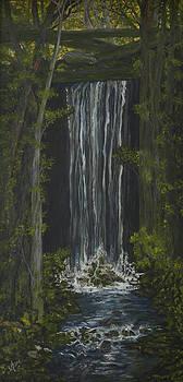 Mountain Waterfall by BJ Hilton Hitchcock