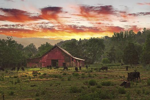 Randall Branham - Movie farm Cosby TN