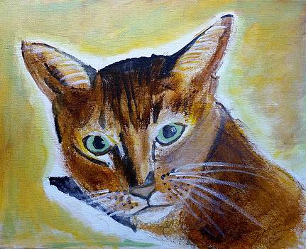 Mr. Cat by Ann Whitfield
