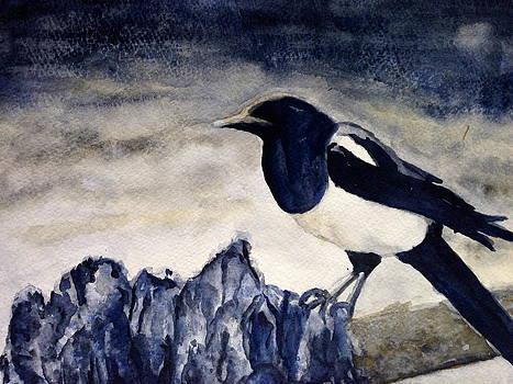 Mr. Magpie by Carol Warner