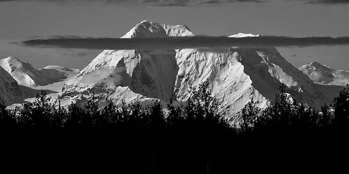 Mt Denali by Duane King