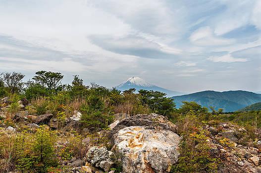 MT. Fuji by Kay Price