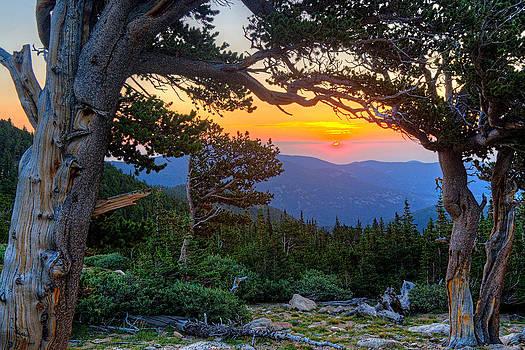Mt Goliath Sunrise by Jim Bennett