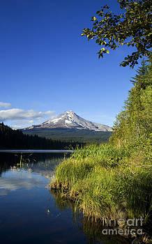 Charmian Vistaunet - Mt. Hood