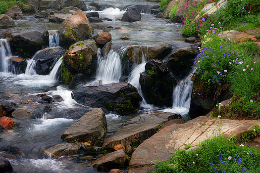 Mt Rainier Mountain Stream by Randall Branham