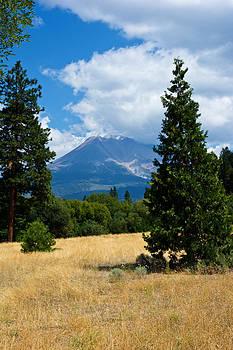 Randall Branham - Mt Shasta Meadow