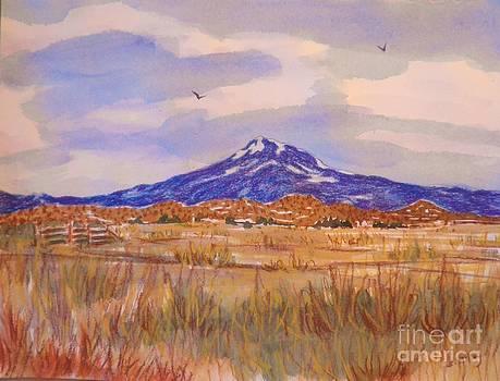 Mt. Shasta by Suzanne McKay