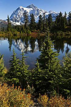 Mt Shuksan Reflection by Ross Murphy