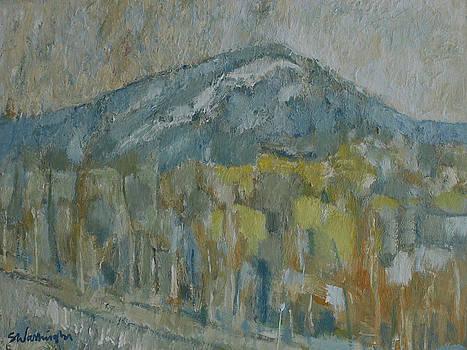 Mt. Tammany IV by Stephen Washington