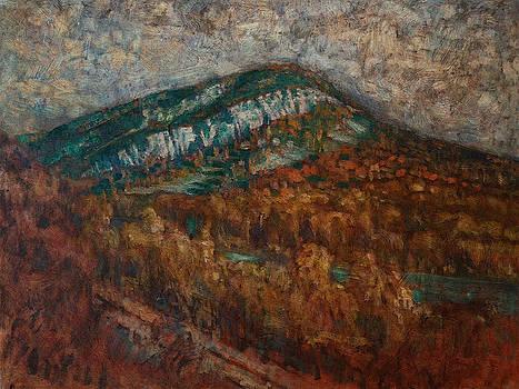 Mt. Tammany VII by Stephen Washington