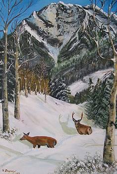 Mule Deer in Winter by Sharon Duguay