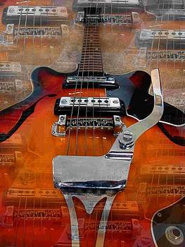 Multi-strung  guitar by Darryl  Kravitz
