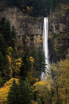 Multnomah Falls by Brian Bonham