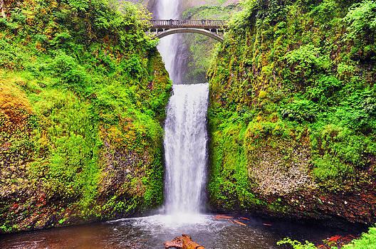 Multnomah Falls - Columbia River Gorge - Oregon by Bruce Friedman