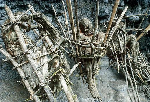Michael McCoy - Mummified Bodies