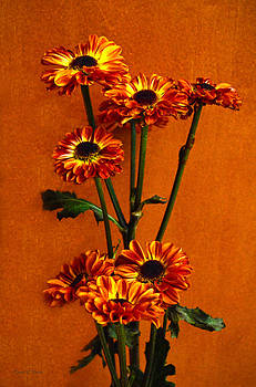 Mums The Happy Fall Flower by Sandi OReilly
