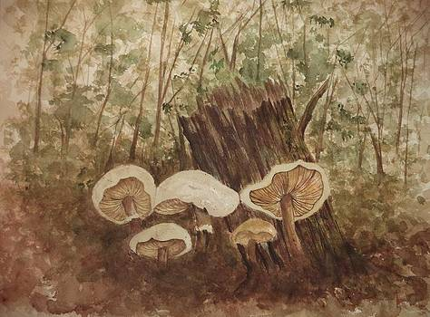 Mushroom Patch by Constance Larimer