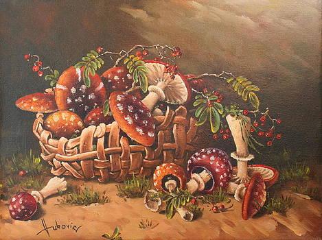 Mushrooms by Dusan Vukovic